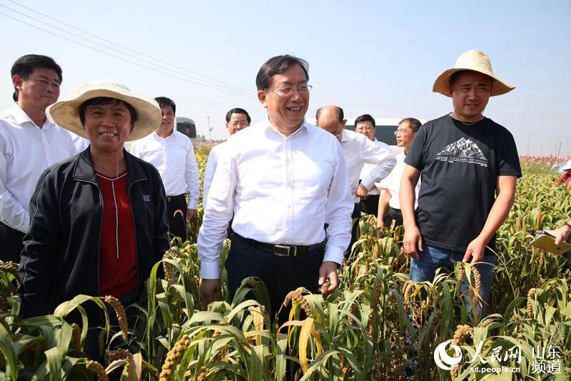 9月23日,山东省委常委、济南市委书记王忠林走进田间和村民们共庆丰收。(摄影:陈长礼)